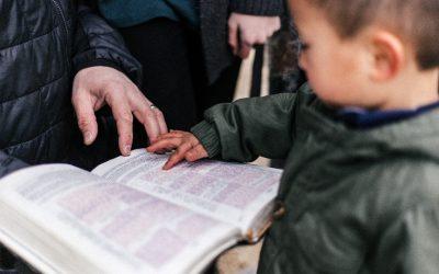 TM3. Introducción a la Pedagogía Cristiana