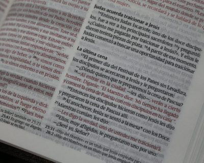 B6a y B6b. Exégesis del Nuevo Testamento I